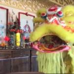 Surprise and Auspicious Lion Dance